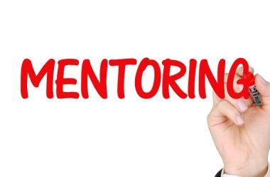 ANNA Mentorship Program